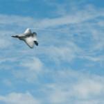 F-22 Raptor-16