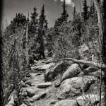 Pike's Peak-24