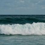 Surf & Sports-12