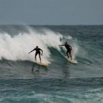 Surf & Sports-15